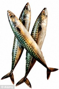 Fish Oils Our Becoming 'A Cure All'