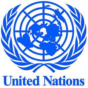 United Nations to look at Work Capability Assessments in U.K  [WCA] !