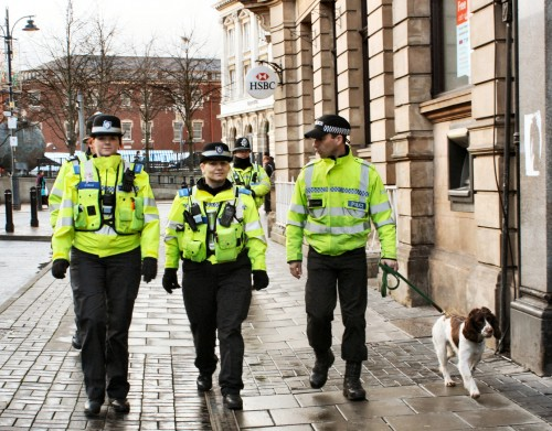 University of Buckingham brings in sniffer dogs to improve mental health