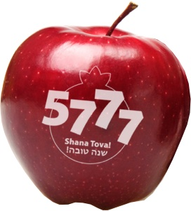 Rosh Hashanah 5777 [Happy New Year To All Our Jewish Friends]